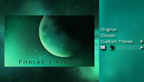 Phalaris-phalaris_atavus_1.png